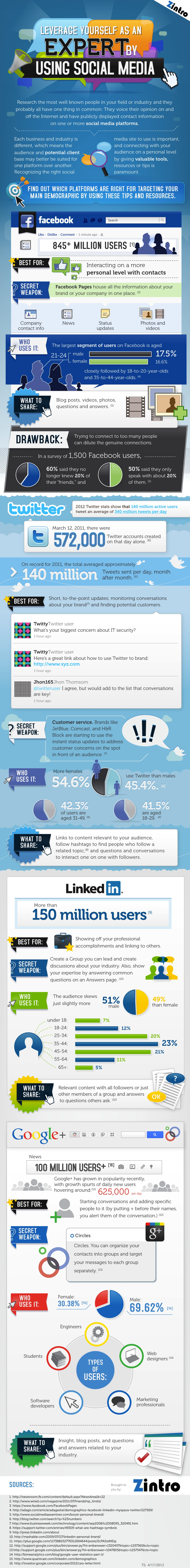 How To Leverage Yourself As An Expert By Using Social Media Infographic