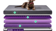 Purple.com Delivers ScienceyOrthopedic Comfort Purple's Smart Comfort Grid™ is engineered to adapt to your pet's body for deep pressure relief and support. Keeps Your PetFunky-Fresh Just throw the antimicrobial, moisture-resistant,...