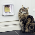 Surepetcare.com FEATURES Connect with the Hub which links the Microchip Cat Flap Connect to the Sure Petcare app Know whether your pets are at home, monitor long-term activity and notice...